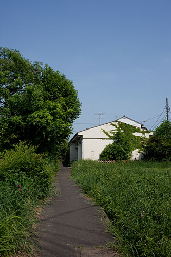24:  西永福から阿佐谷まで_b0171364_1751512.jpg