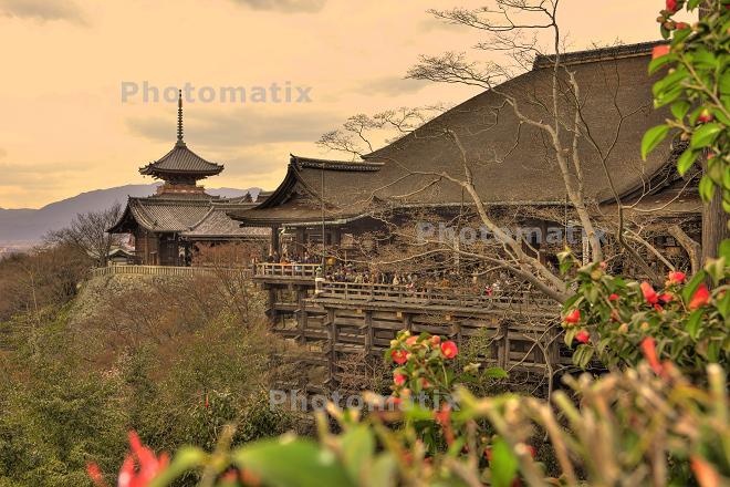 Kiyomizu-dera_e0133774_2272932.jpg