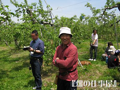 美味しい林檎のオーナーになる。。。。_e0065906_17565071.jpg