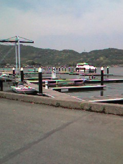 今日の浜名湖_e0033609_12133332.jpg