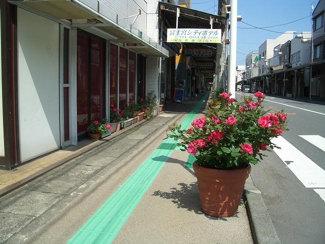 オープンガーデン富士宮2009_f0141310_22234036.jpg