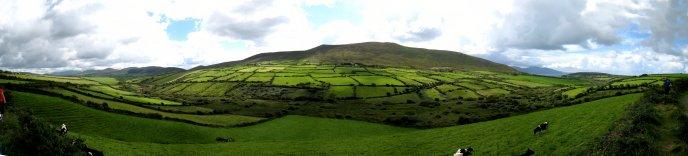 アイルランド編(41):ディングル半島(08.8)_c0051620_8594928.jpg