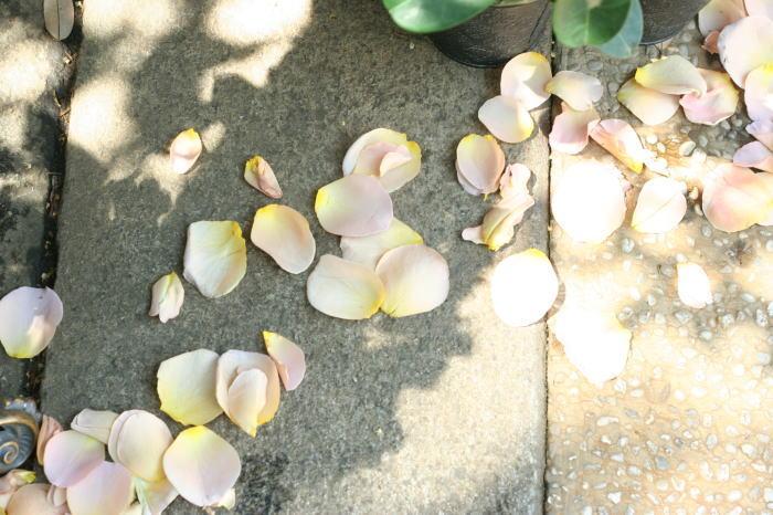シェ松尾松濤レストラン様の装花 レース_a0042928_21401684.jpg