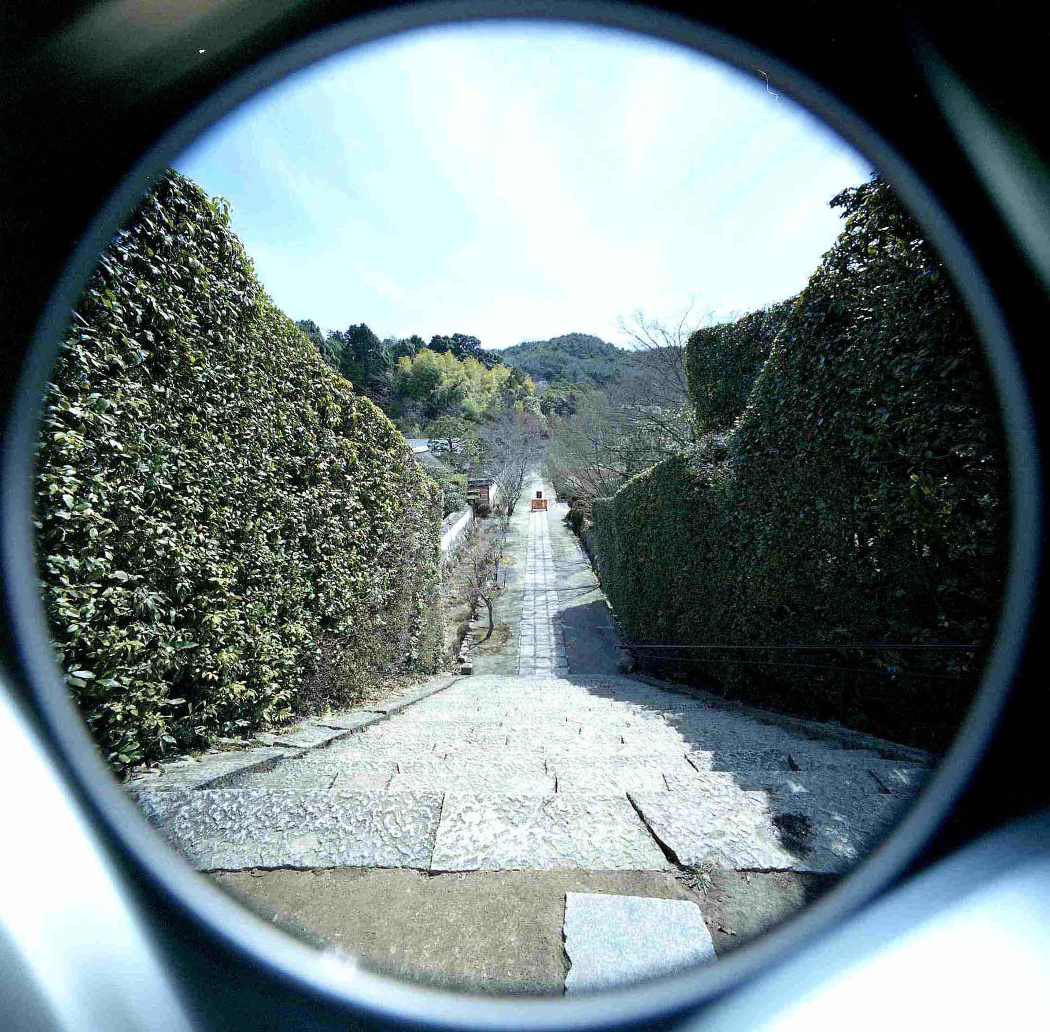 魚眼琢磨銀鏡円形写野暗箱_d0138130_16162250.jpg