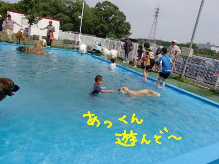 f0176830_17481494.jpg