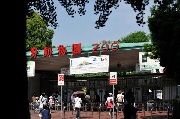 今日の上野_b0023856_18435357.jpg