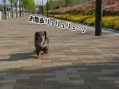 d0020869_00593.jpg