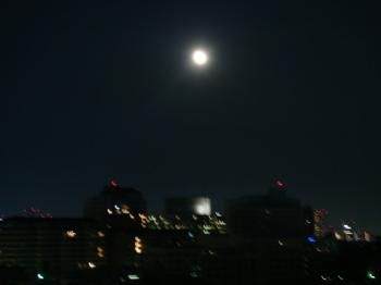 2009.5.9  きれいなお月様_a0083571_1281629.jpg