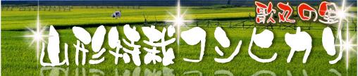 山形の歌丸の里米コシヒカリ_c0068515_1135240.jpg