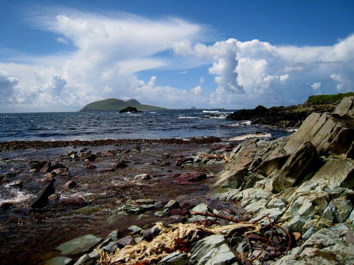 アイルランド編(42):ディングル半島(08.8)_c0051620_7464536.jpg