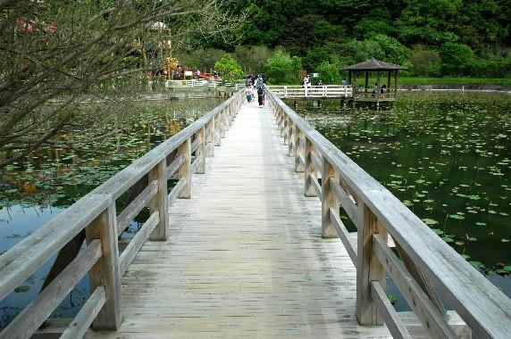 和歌山県植物公園緑花センター _b0093754_23592055.jpg
