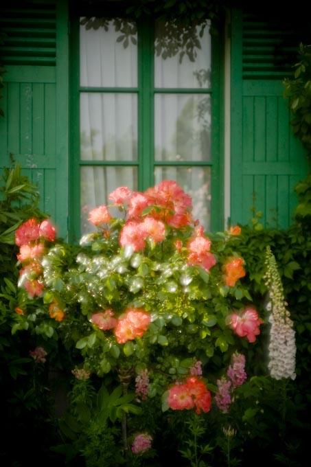 印象派の庭(ガ-デンパ-ク・モネの庭)_c0150383_225915.jpg