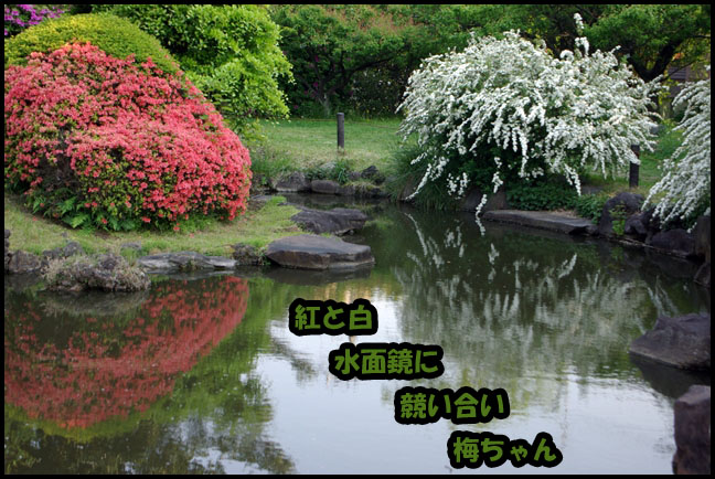 b0019313_181178.jpg
