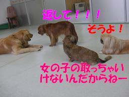 f0170713_10274710.jpg