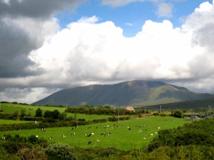 アイルランド編(43):ディングル半島(08.8)_c0051620_6115048.jpg