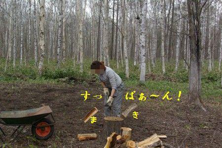 c0116534_0175218.jpg