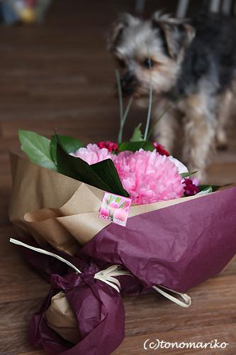 小さなスーパーのお花屋さん_c0024345_19233215.jpg