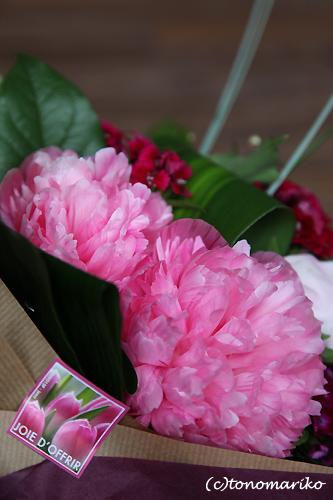 小さなスーパーのお花屋さん_c0024345_19234511.jpg