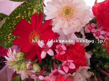 f0150945_21204297.jpg