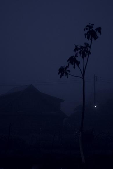 霧の朝_f0155808_027146.jpg
