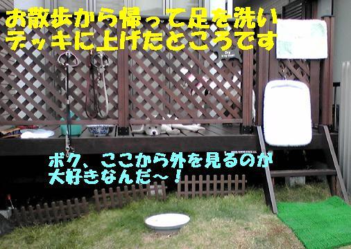 f0121712_14453519.jpg
