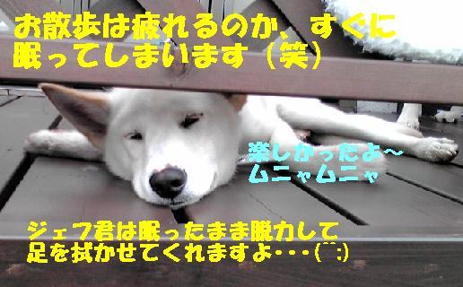 f0121712_14454839.jpg
