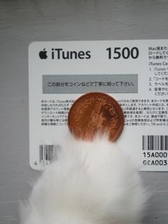 iTunes Store_f0181924_18443283.jpg