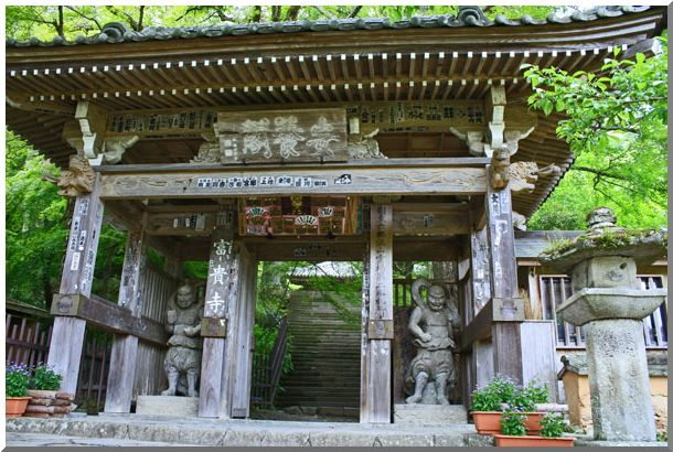 九州の旅:Ⅲ_d0123528_9155276.jpg