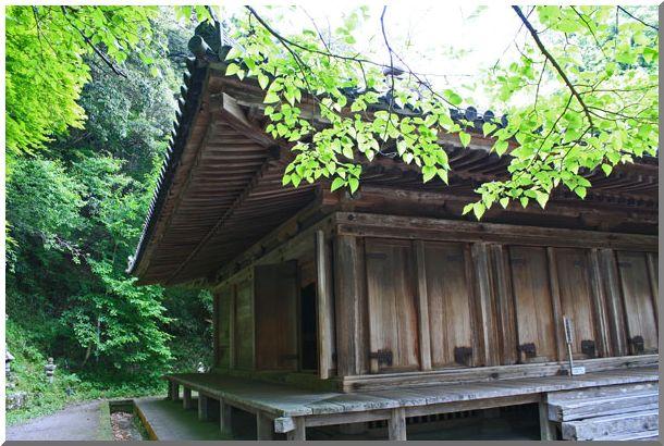 九州の旅:Ⅲ_d0123528_9355834.jpg