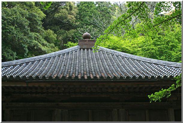 九州の旅:Ⅲ_d0123528_9455981.jpg