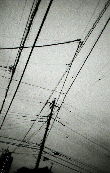 ♪_b0132059_1035394.jpg