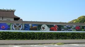 掛川花鳥園 その一_f0139963_6415462.jpg
