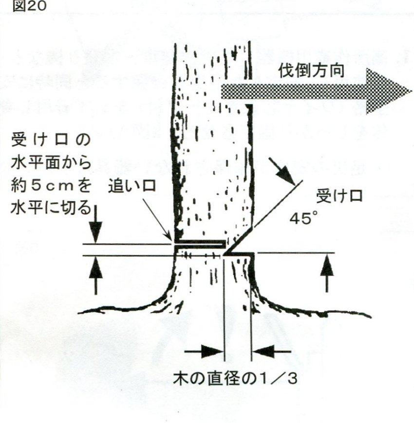 f0104277_5384718.jpg