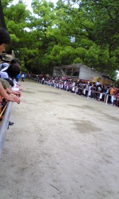 5月15日は葵祭の日_f0198285_231957.jpg