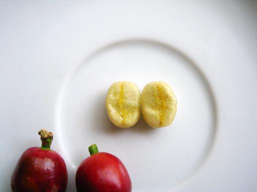 1つのコーヒーの果実(コーヒーチェリー)には2つの種子(コーヒー豆)が入っている