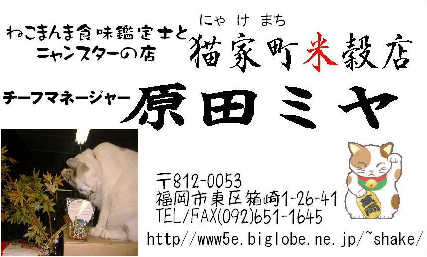 b0135121_11535046.jpg