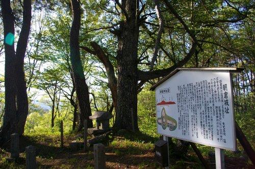 新緑に包まれる八ヶ岳 ~朝倉山城跡から~_d0102327_22414160.jpg