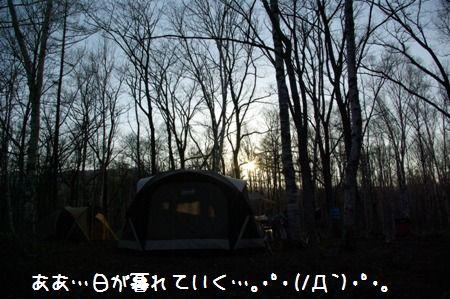 c0116534_0585676.jpg