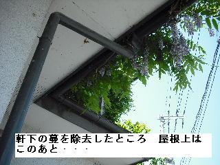 f0031037_20521951.jpg