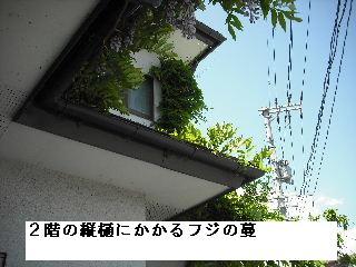f0031037_20531785.jpg
