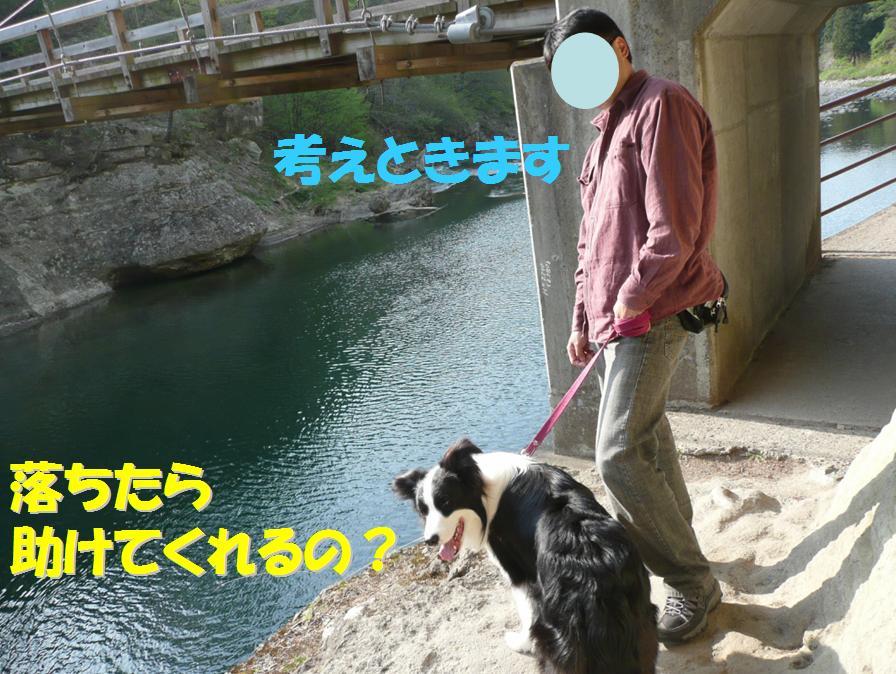 c0147241_124741.jpg