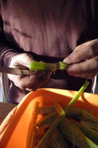 畑の便利野菜カルドの下準備_f0106597_16503317.jpg