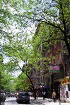 グリニッジ・ビレッジから、街角の緑 _b0007805_9353788.jpg
