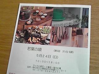 b0174012_1423272.jpg