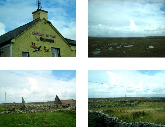 アイルランド編(46):イニシュモア島へ(08.8)_c0051620_695966.jpg