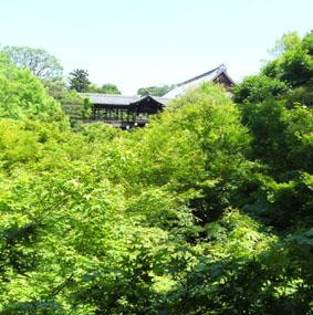 さくらちゃん教室_a0111125_2113346.jpg