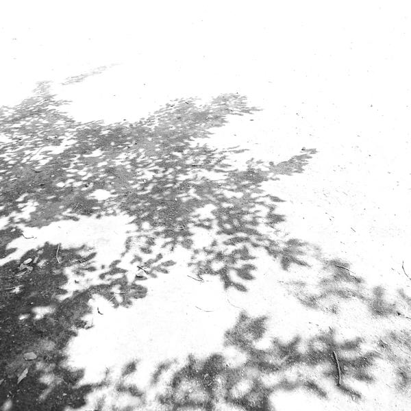 f0128185_0533612.jpg