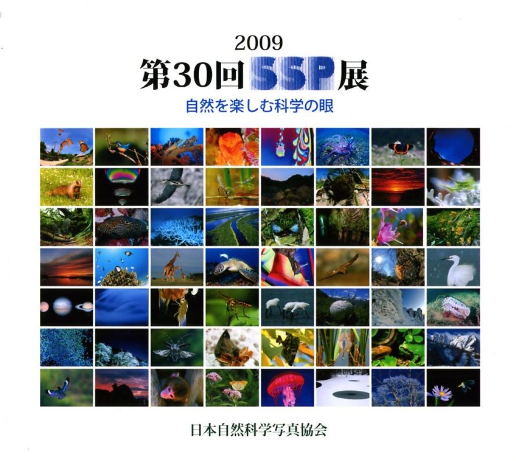 5/15 お知らせ_a0010095_175848.jpg