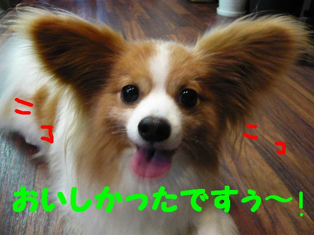 b0130018_1031544.jpg