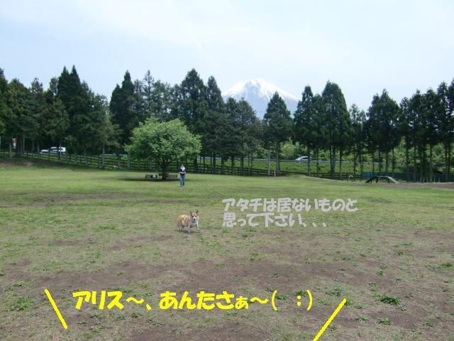 f0182121_230560.jpg